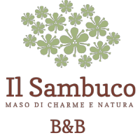 Il sambuco bed and breakfast